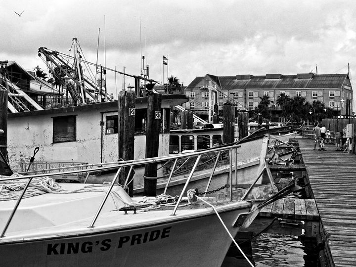 bows of shrimp boats at pier 19 in G - Robert Brown Photography