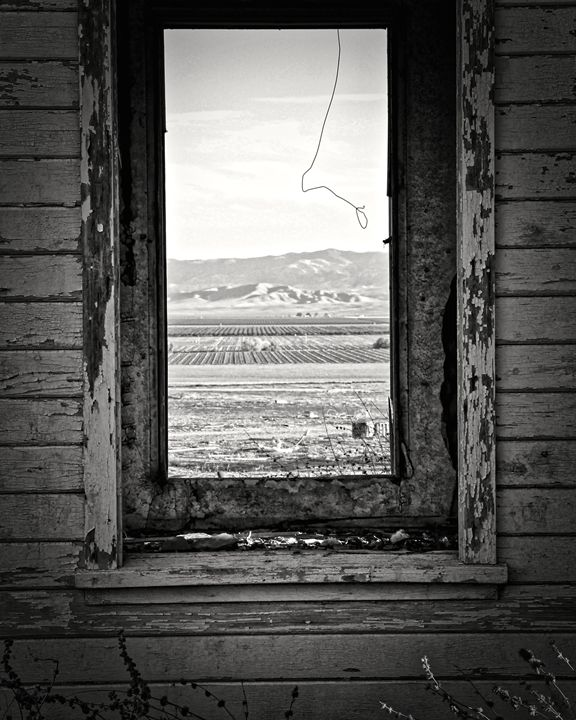 """""""Looking in, to the Outside"""" - Ric Ramirez Photography"""