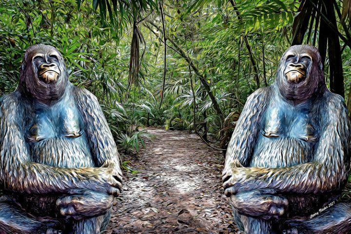 Brass Gorilla Trail - Larry Nader Photography & Art