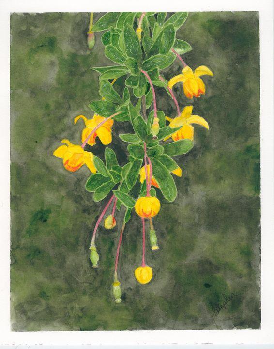 Calafate - Patagonia Watercolors
