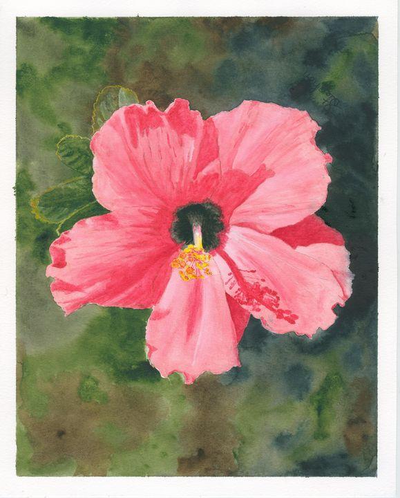 Hibiscus - Patagonia Watercolors