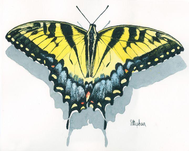 Eastern Tiger Swallowtail - Patagonia Watercolors