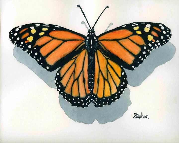 Monarch Butterfly - Patagonia Watercolors
