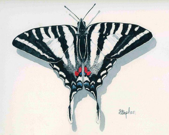 Zebra Swallowtail - Patagonia Watercolors