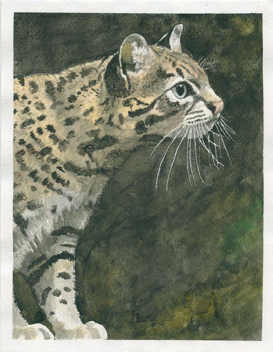 Geoffroy's cat - Patagonia Watercolors