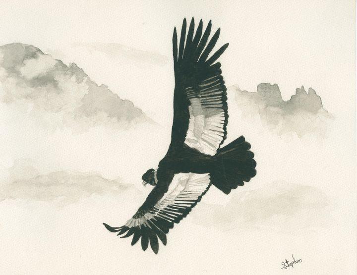 Andean Condor - Patagonia Watercolors