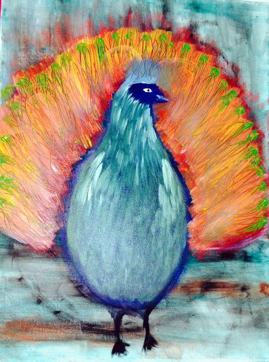 peacock - rahavdoron