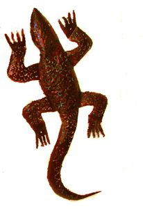 Hand made Lizard metal sculpture - Amohjay Creations