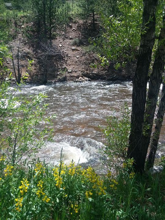 Running River (Estes Park .Colorado - Aw's  Art