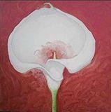 flower 1425