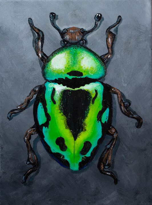 Green Metallic Beetle - Copper Lantern