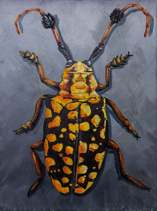 Yellow Beetle - Copper Lantern