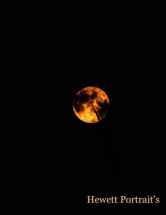 Moonlight - Hewett Portraits