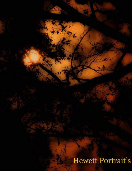 Skies of Fire - Hewett Portraits