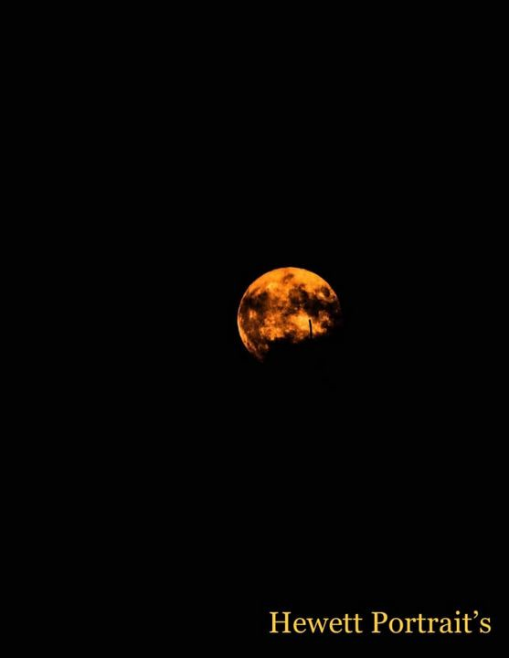 Man in the Moon - Hewett Portraits