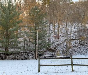 Snow in the Country