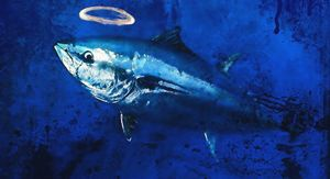 sacred blue tuna