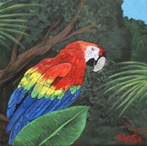Scarlet Macaw, 2018