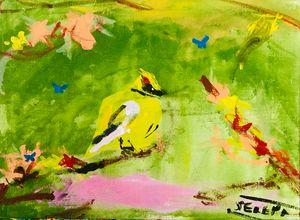 Bird of the Woods