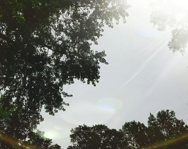Sky - J H Walla