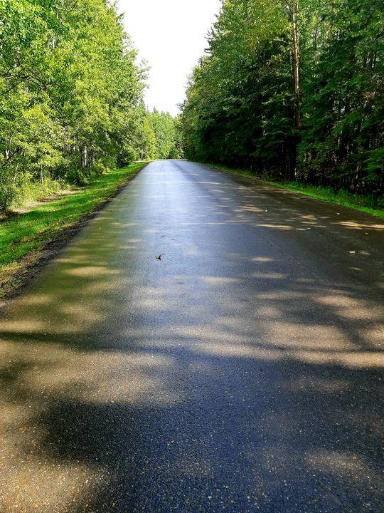 A long walk on a short day - Aron Kane