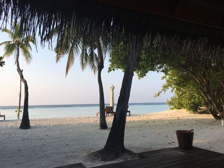 Beaches - Sotomayor
