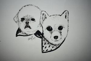 B&W Dogs