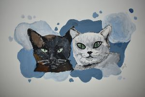 Cats With Blue