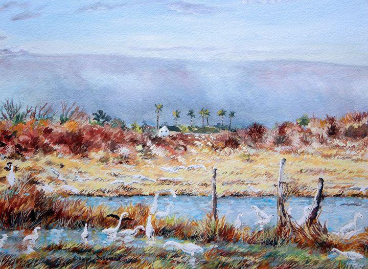 Egret rising 1 - Gordon Solomon Gallery