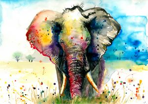 The Rainbow Elephant