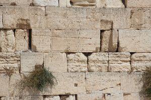 Western Wall Jerusalem. Israel