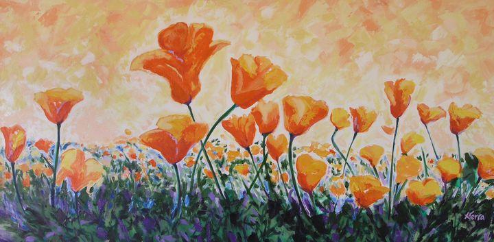 Poppies Brighten the Day - Xo Terra