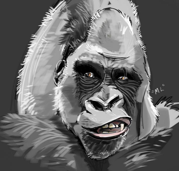Gorilla - mickleo