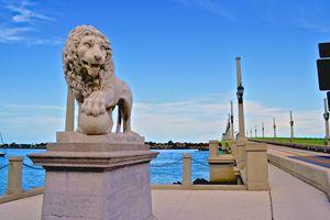 Lions - J. R. Zapala