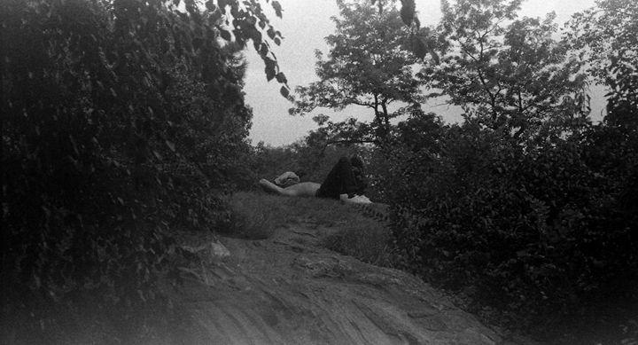 Sleep in the Park. - Noble Chevalier