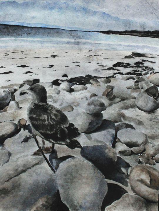 Beach - Jiani Hou