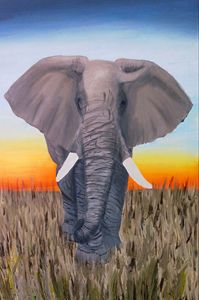 elephant in sunset