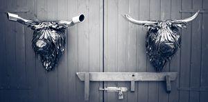 Highland Cows - Steve MacBurke