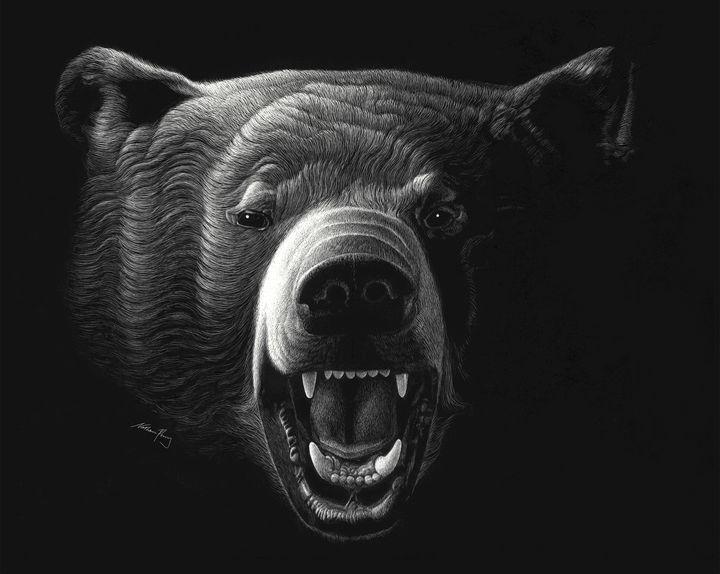 Black Bear - Nathan Perry Fine Art