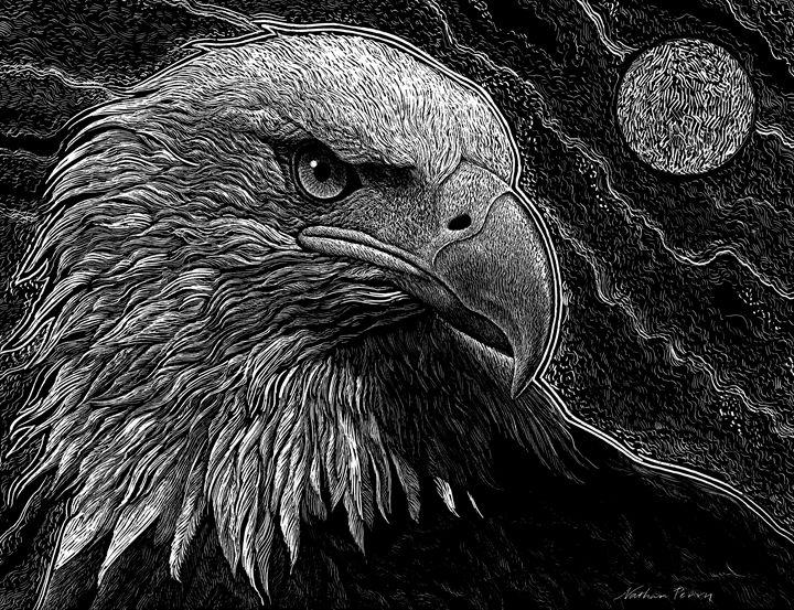 Eagle Eye - Nathan Perry Fine Art