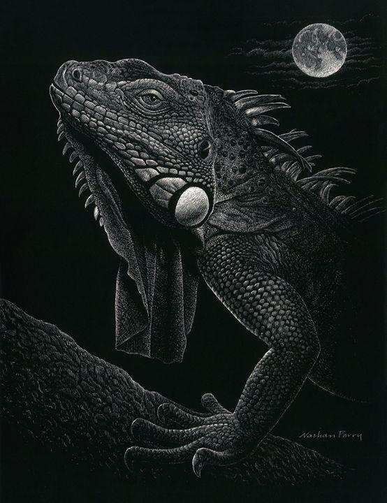 Night Iguana - Nathan Perry Fine Art