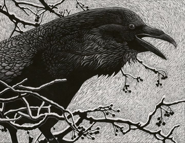 Raven in Winter - Nathan Perry Fine Art