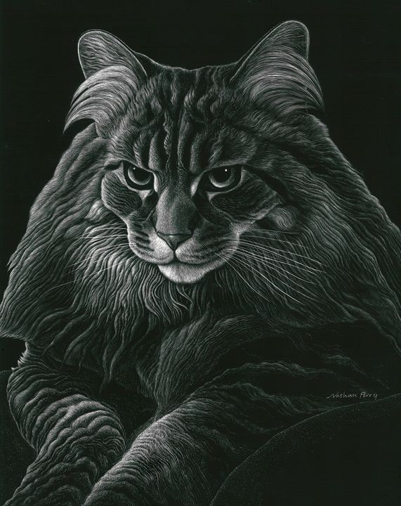 Tabby Cat - Nathan Perry Fine Art