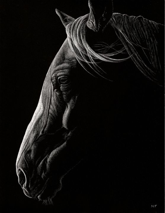 Night Horse - Nathan Perry Fine Art