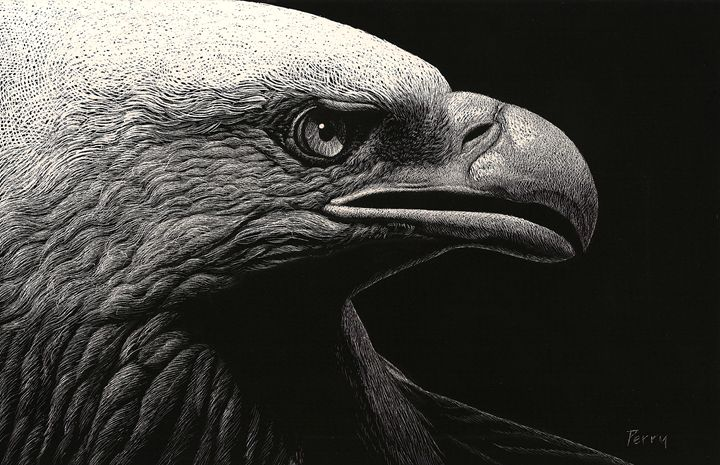 Night Eagle - Nathan Perry Fine Art