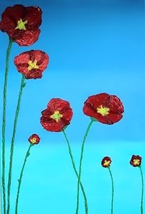 Poppies - Sparky & Jo's Meanderings