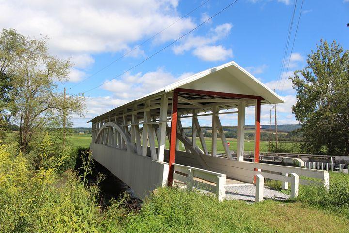 Overgrown Covered Bridge - Digital Perfections