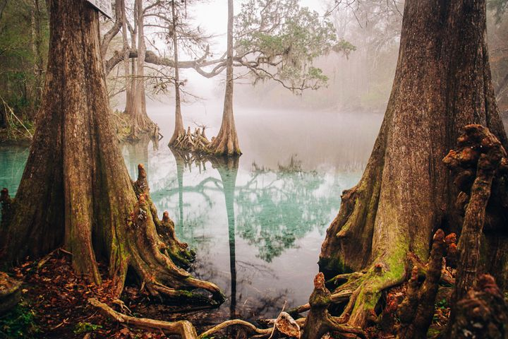 Two World's Collide - J. Parker FL Photographer