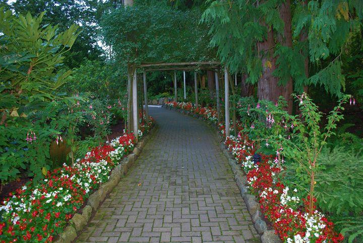 Flower Pathway - Richard W. Jenkins Gallery