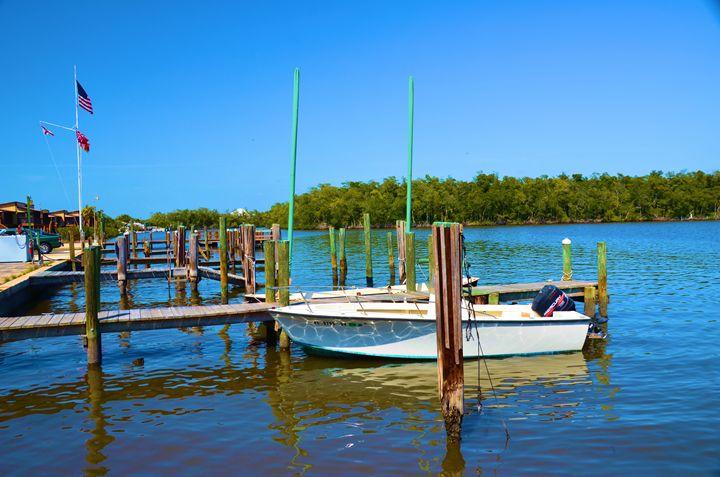 Florida Everglades - Richard W. Jenkins Gallery